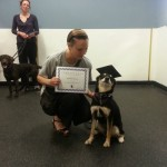 Whiskey Graduates from basic obedience class!